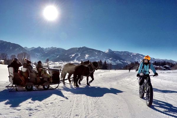 Bild als Platzhalter: Abenteuer & Pferde
