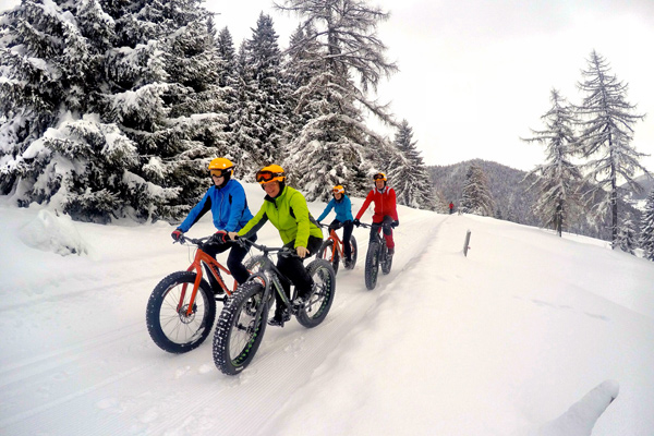 Bild als Platzhalter: Alpine Fatbike